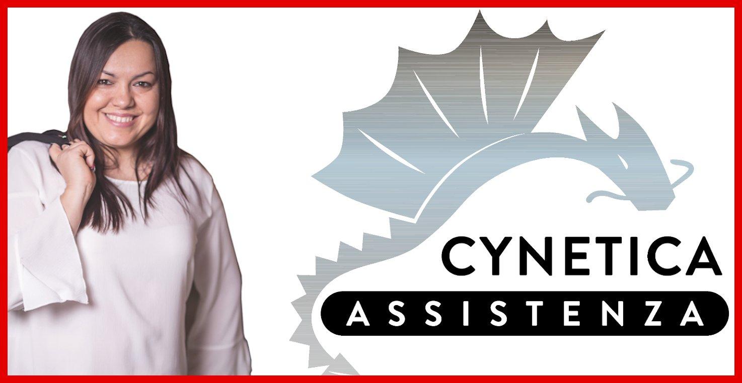 Il blog di Cynetica Assistenza